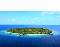 Bandos Island Resort North Male Atoll Maldives