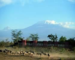 Amboseli Serena Safari Lodge Nairobi Kenya