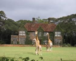 Giraffe Manor Hotel Nairobi Kenya