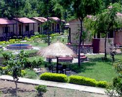 Maruni Sanctuary Lodge Sauraha